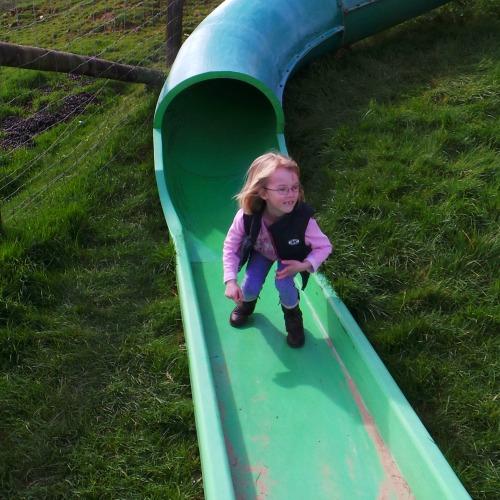 Aly Slide