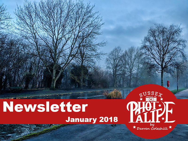 Newsletter Header jan.jpg