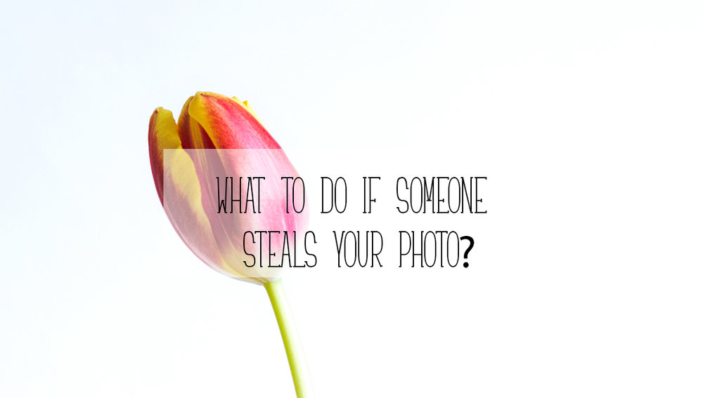 Copy of What to do if someone steals your photo?