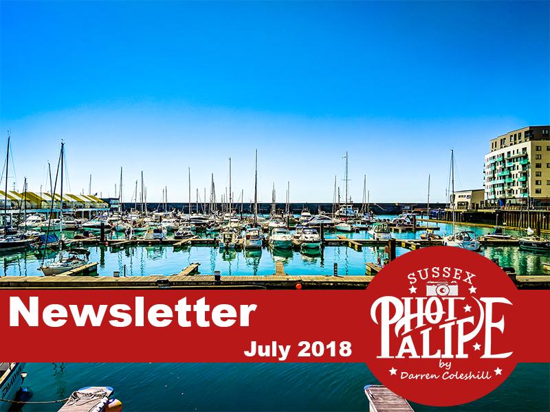 Newsletter july 20.jpg