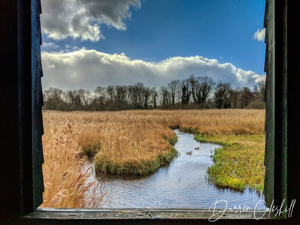 Arundel Wetland Reserve