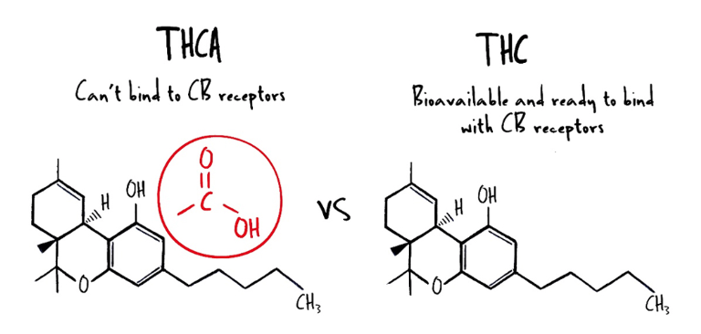 decarboxylation-thca-to-thc