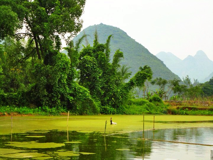 Yangshuo Countryside 6.jpg