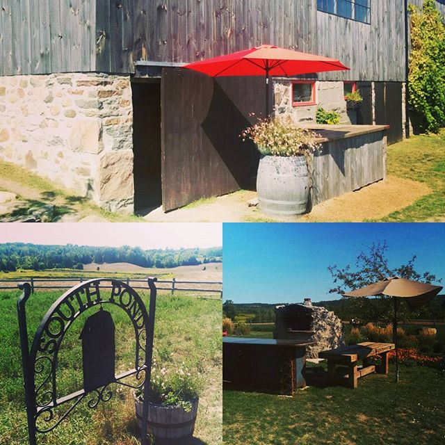 Congratulations Lauren & Brandon!  @southpondfarms #loloandbrando #ontario #wedding #weddingideas #trio #jazz #beautifulfarm