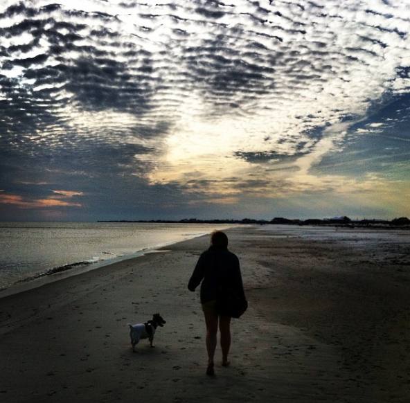Taking a leisurely stroll on the beach at Dauphin Island with my dog.