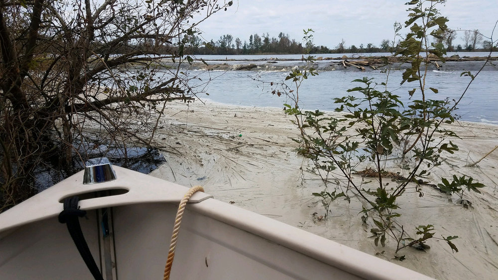 Coal ash flows out of Duke Energy's L.V. Sutton ash pond into the Cape Fear River. Photo - Waterkeeper Alliance.