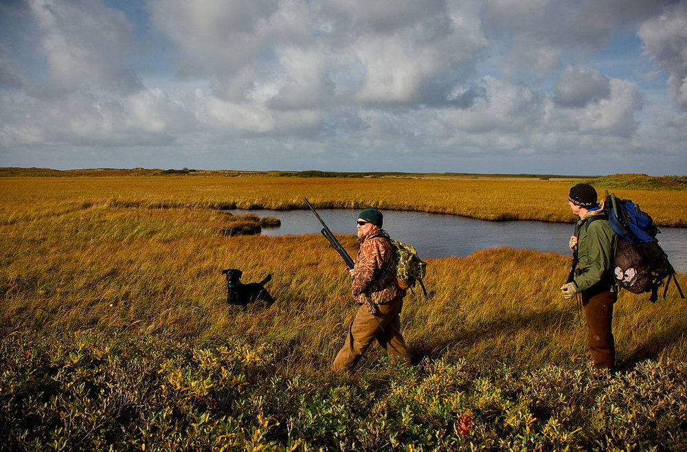 Duck Hunters walk through a wetland complex. Wetlands such as these are critical habitat for waterfowl, fish, and other animals.   Photo credit:    USFWS/Ryan Hagarty