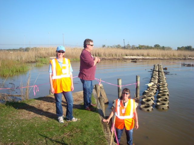 Volunteers look at restored oyster reef near Dog River.