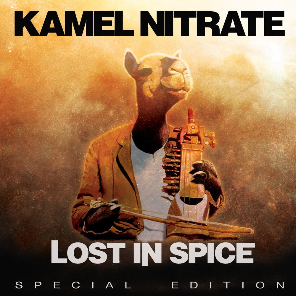Lost In Spice Cover.jpg