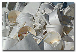 Polystyrene: Local Ordinances -