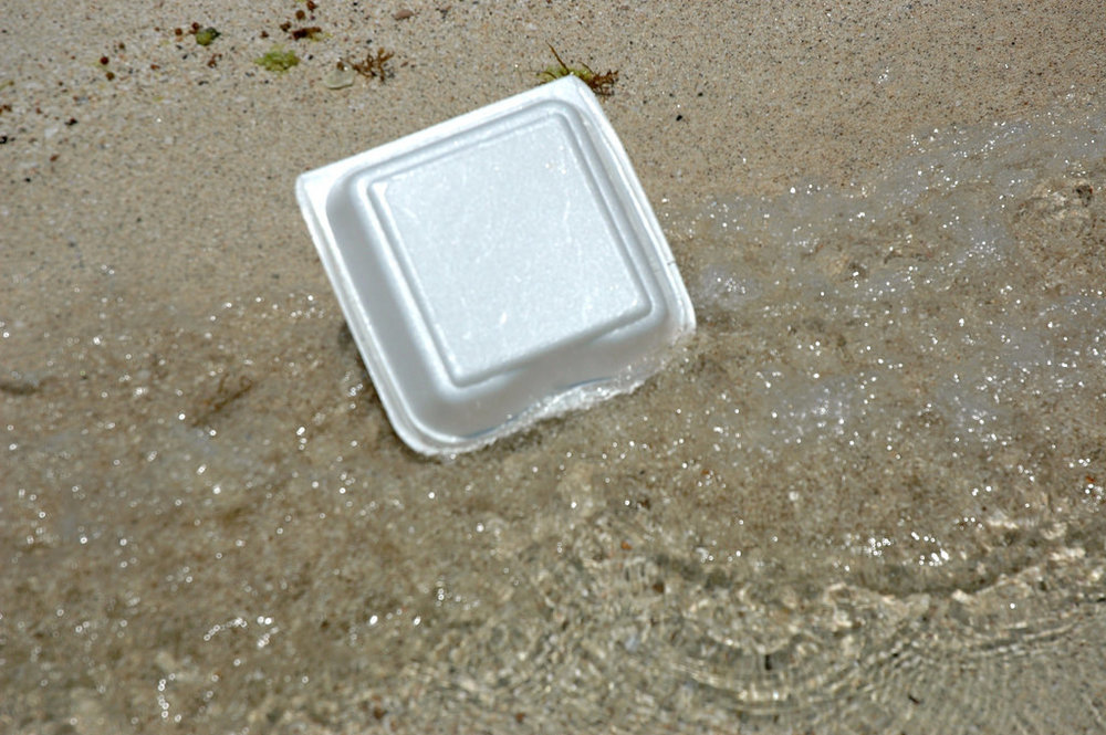 government facility expanded polystyrene ban