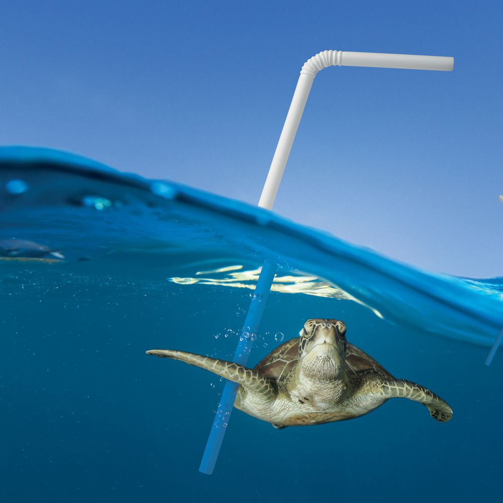Take action to be straw free.Download the toolkit now! -