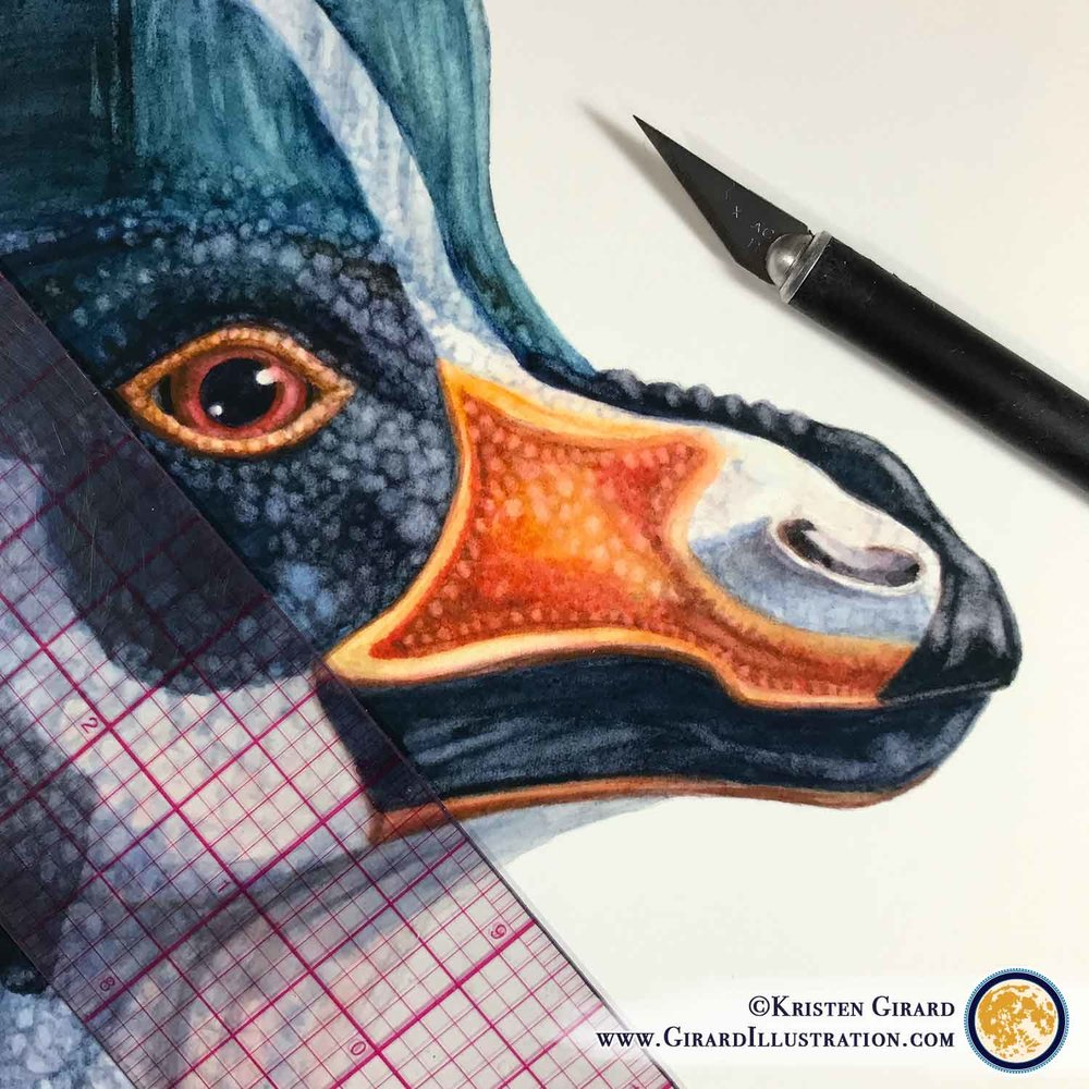 Limited edition prints from Kristen Girard's Dinosaur Collection will be available for sale soon! © by Kristen Girard. Click here to see the art.