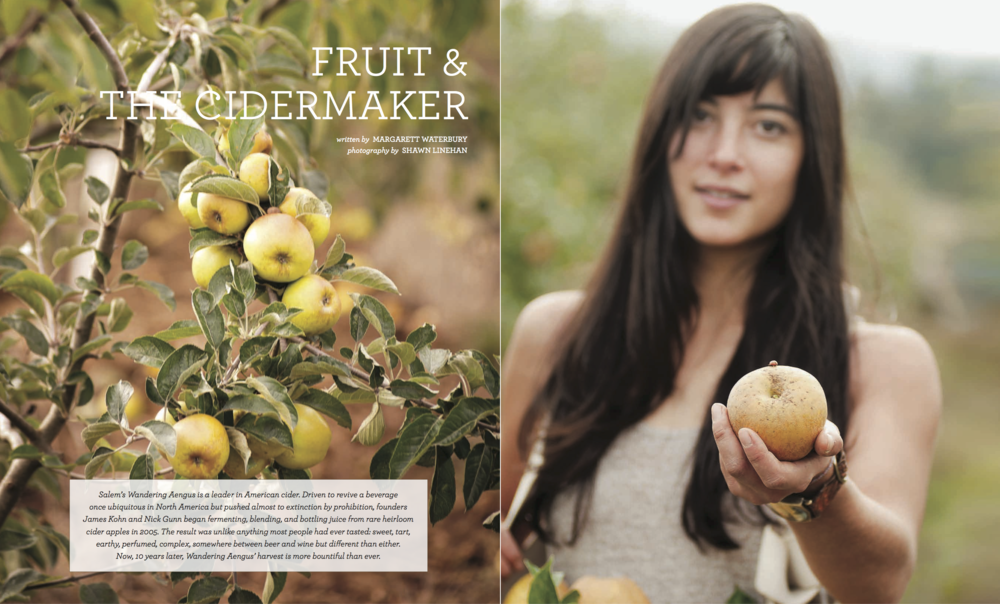Wandering Aengus PR 33 Cider Industry Portrait Magazine_Spreads (dragged).png