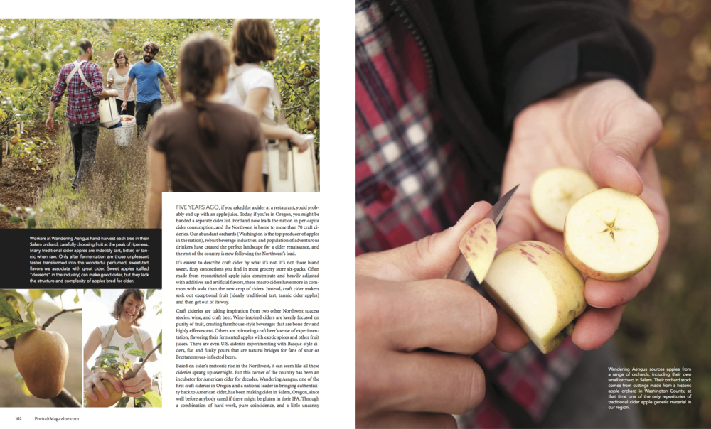 Wandering Aengus PR 33 Cider Industry Portrait Magazine_Spreads (dragged) 1.png