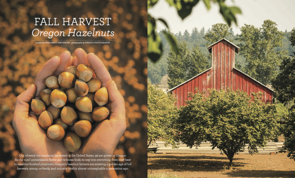 HAZELNUT STORY _ FULL PR 33 Portrait Magazine_Spreads (dragged) 1.png