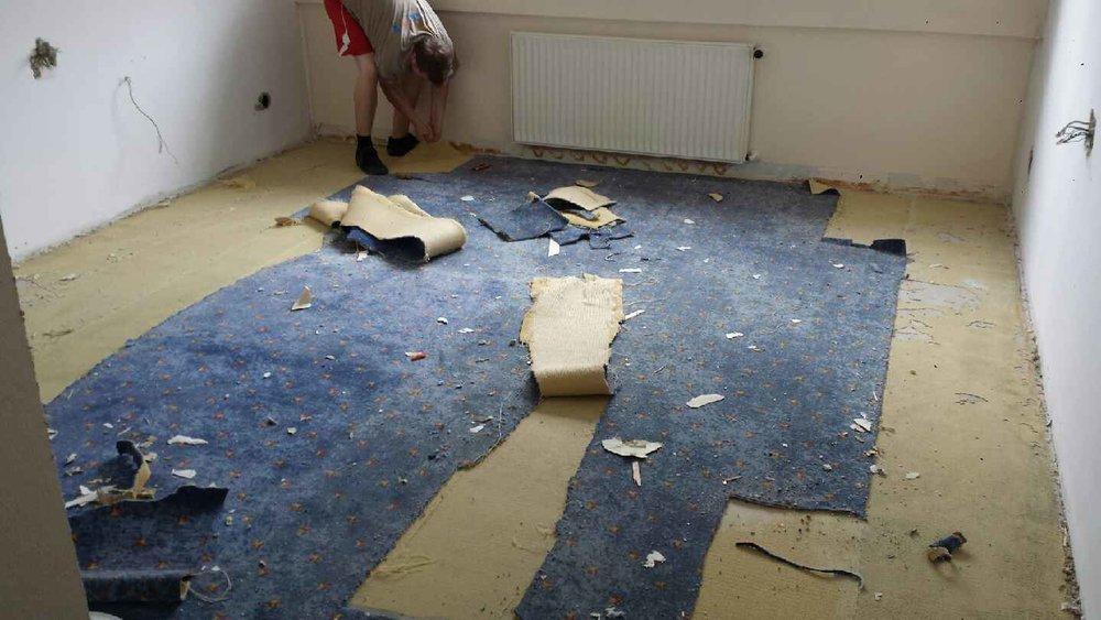 Teppich raus