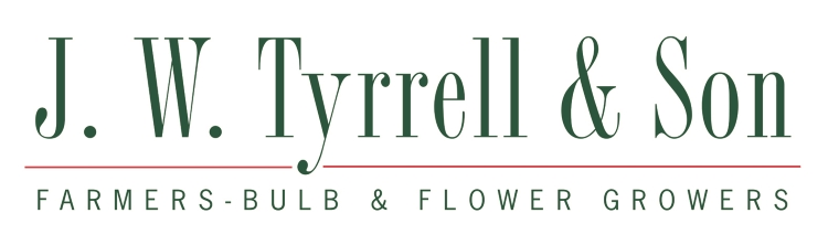 British Flowers Week 2016, J.W. Tyrrell & Son, presented to you by New Covent Garden Flower Market and the NFU
