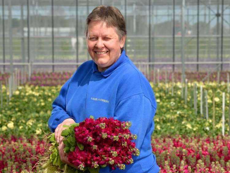 British Flowers Week 2016, featuring Sue Lamb of Lamb's Flowers Ltd, presented to you by New Covent Garden Flower Market