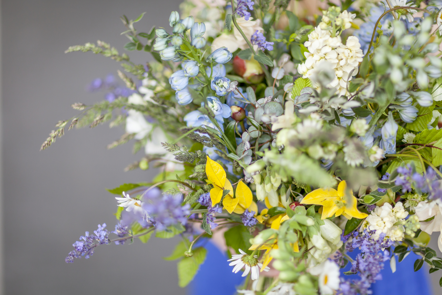 Buying british british flowers week not only do british flowers usually have a better scent than imported ones they will be fresher and last longer minimum distance means maximum vase life izmirmasajfo