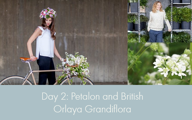 Day 2 of British Flowers Week, featuring designs using British Orlaya by Florence Kennedy of Petalon, presented to you by New Covent Garden Flower Market