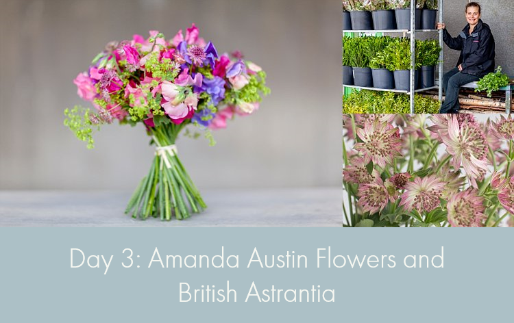Day 3 of British Flowers Week, featuring designs by Amanda Austin of Amanda Austin Flowers using British Astrantia, presented to you by New Covent Garden Flower Market