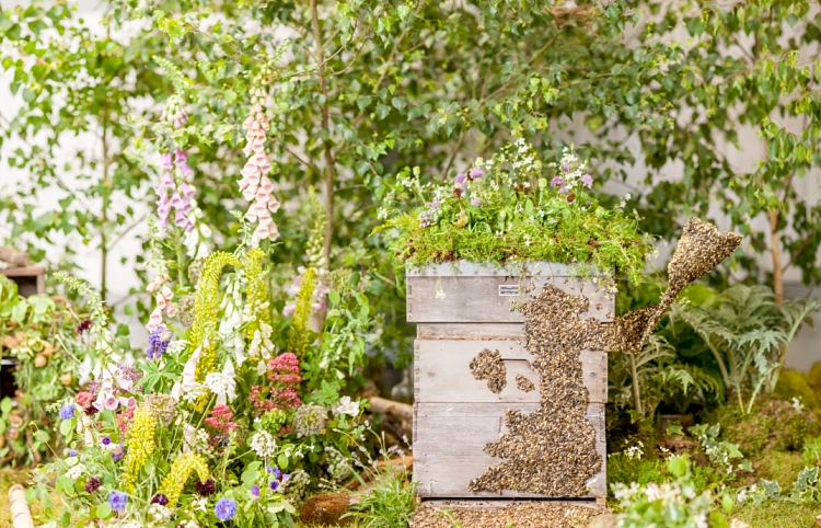 Abigail MacNiven, Petal & Stalk magical woodland for British Flowers Week 2017 by New Covent Garden Flower Market