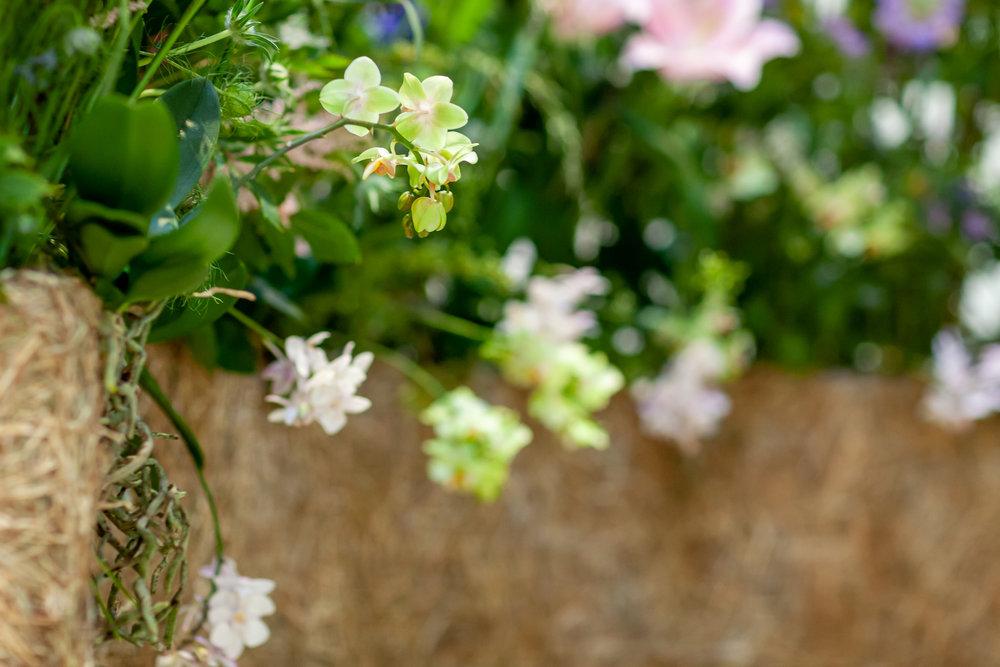 Evolve-Flowers-installation-British-Flowers-Week-2018-at-Garden-Museum-by-New-Covent-Garden-Market (5).jpg
