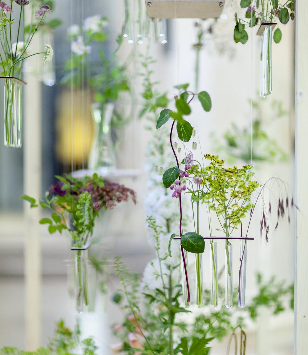 Festoon-Flowers-installation-British-Flowers-Week-2018-at-Garden-Museum-by-New-Covent-Garden-Market (6).jpg