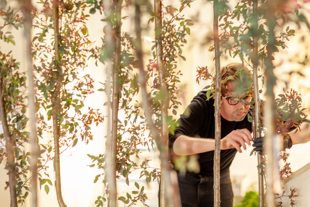 Harrys-Flowers-installation-British-Flowers-Week-2018-at-Garden-Museum-by-New-Covent-Garden-Market (4).jpg