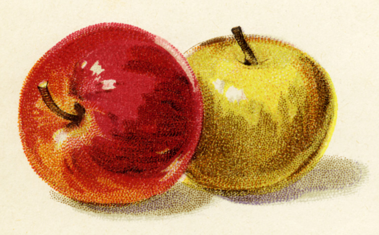 red-apple-yellow-apple-free-vintage-fruit-clipart-antique-I7VsiS-clipart.jpg
