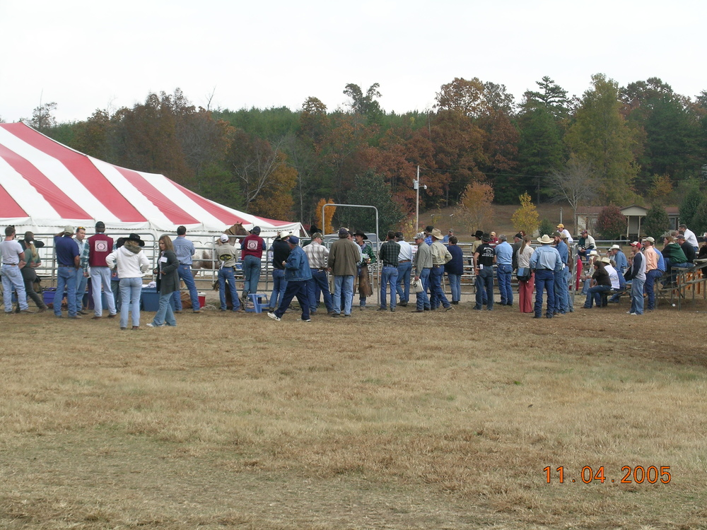 2005 BWFA Convention Noavel Headstall Training with Rick Wheat.jpg