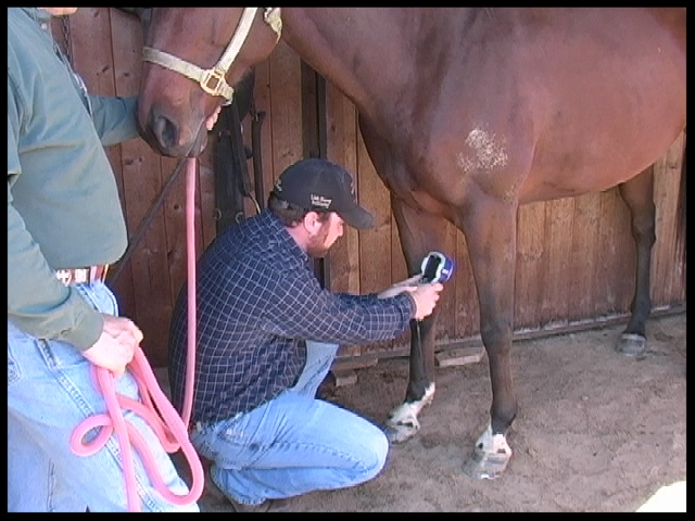 Photo 4 -Onsite Thermal Imaging offers immediate education for farrier and owner.JPG