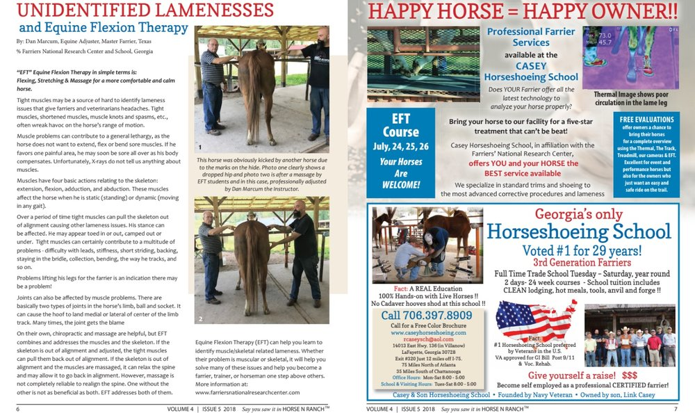 Unidentified Lamenesses And Equine Flexion Therapy Casey Son