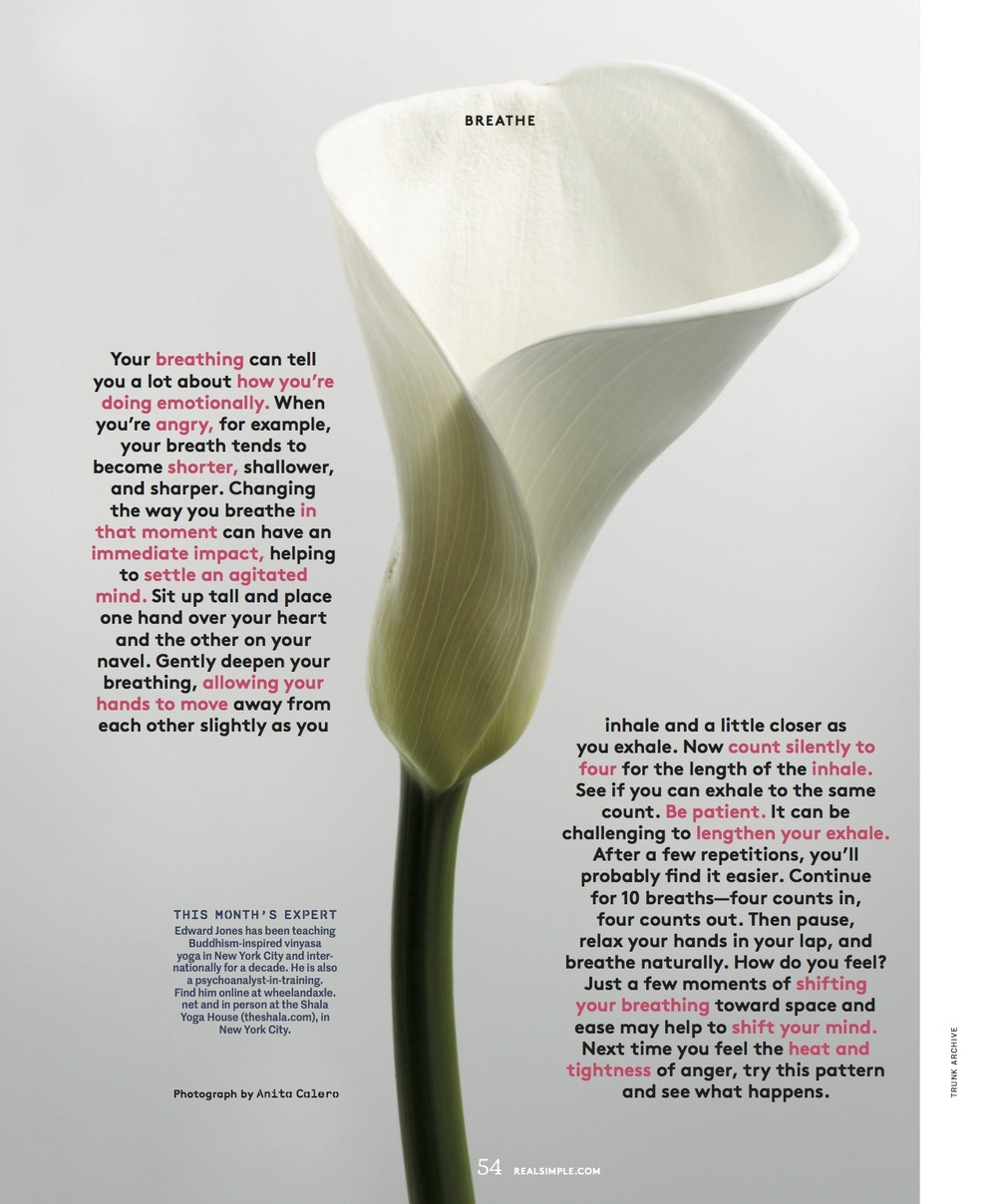 Image courtesy of Real Simple