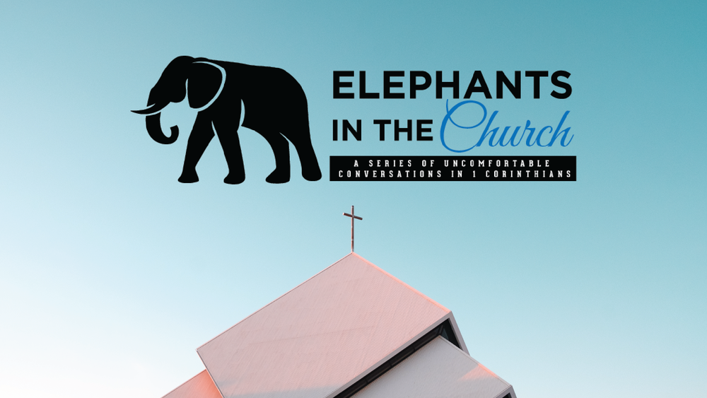 Elephants in the Church-01.png