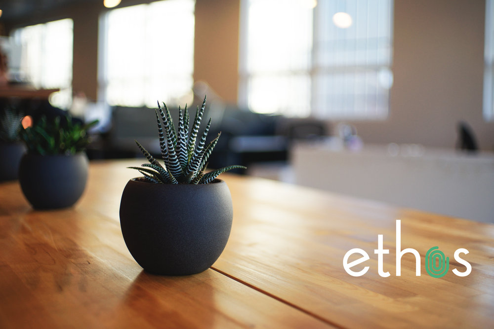Solving People Problems. - You company's culture isn't just important. It's everything. Now more than ever.At Ethos, we help growing and growth-stage companies build incredible – and incredibly diverse – company cultures that fuel their success.We know amazing corporate culture doesn't create itself. But, with our proven toolset, we shape talent and culture to achieve extraordinary business outcomes.For more information about Ethos, visit our website.