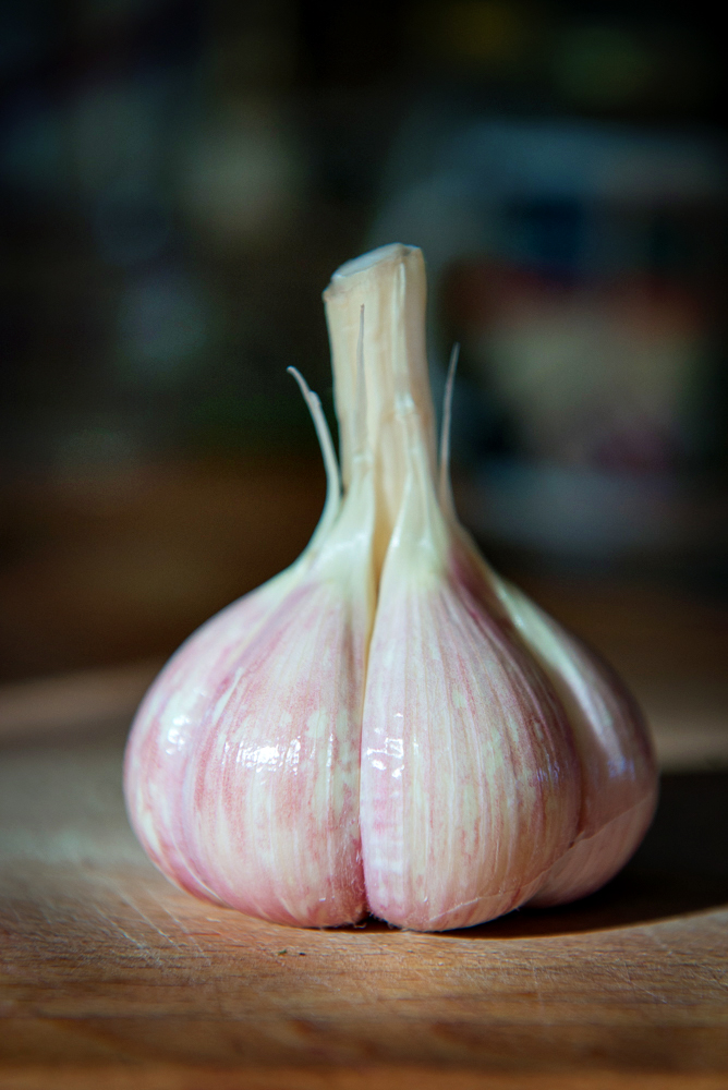 Meadowlark garlic peeled of it's outer papery skin.