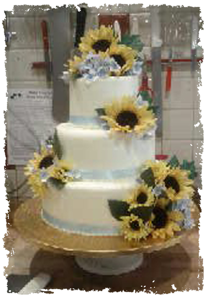 Cammie cake yellow sunflower
