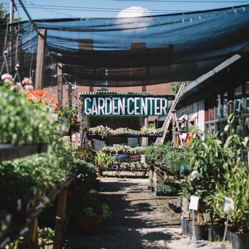 Garden Center Greenhouse Flowers And Weeds