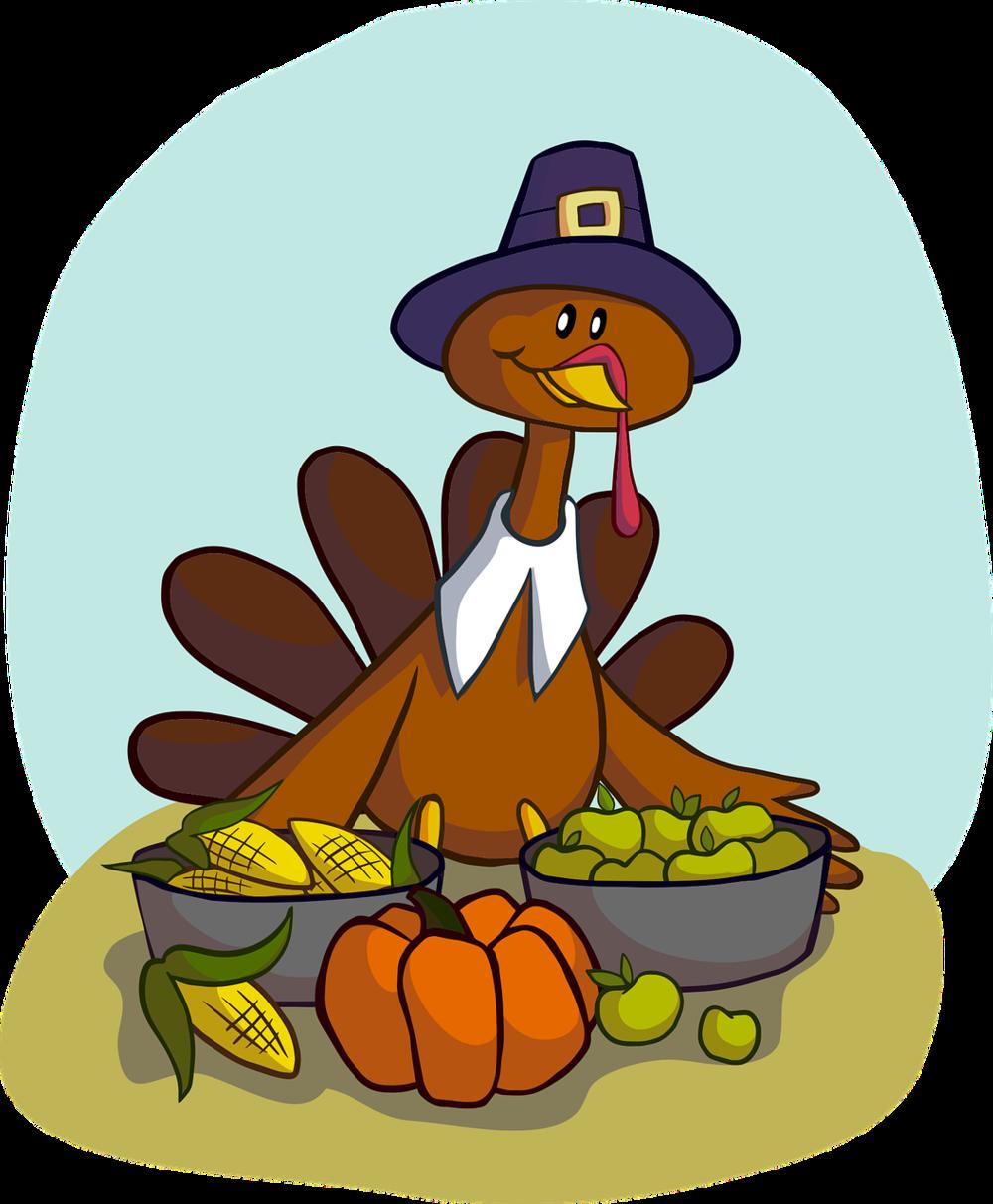 turkey-1456358_1280 (1).png