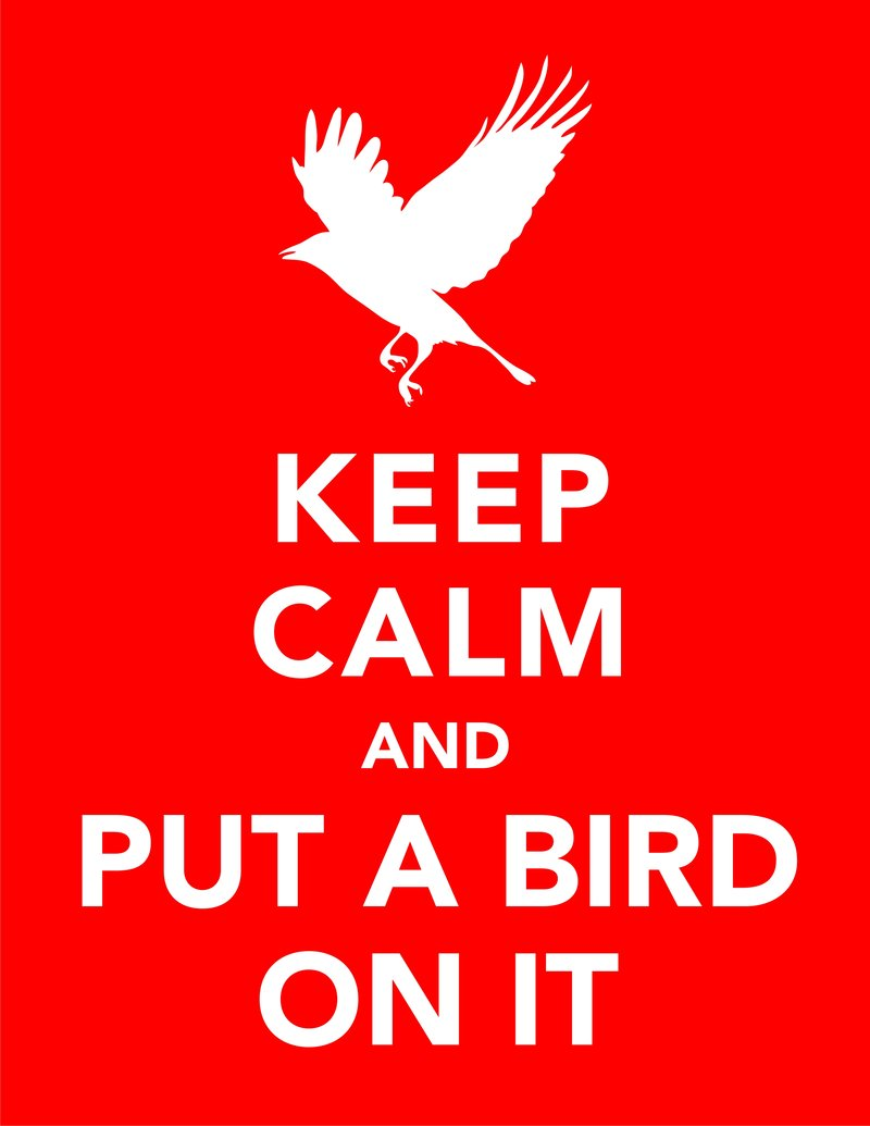 keep_calm_and_put_a_bird_on_it