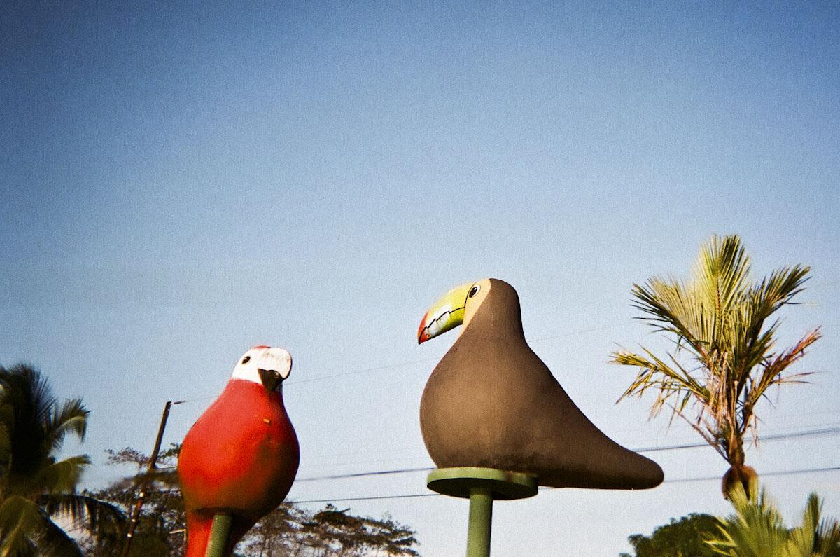 Angry Birds, Costa Rica