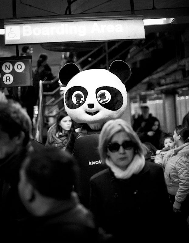 Punching Panda, NYC