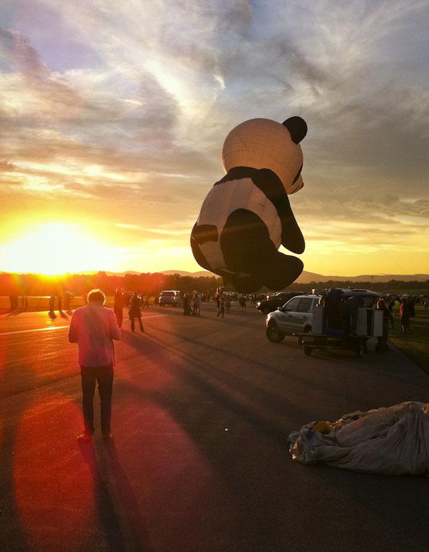 Flying Panda