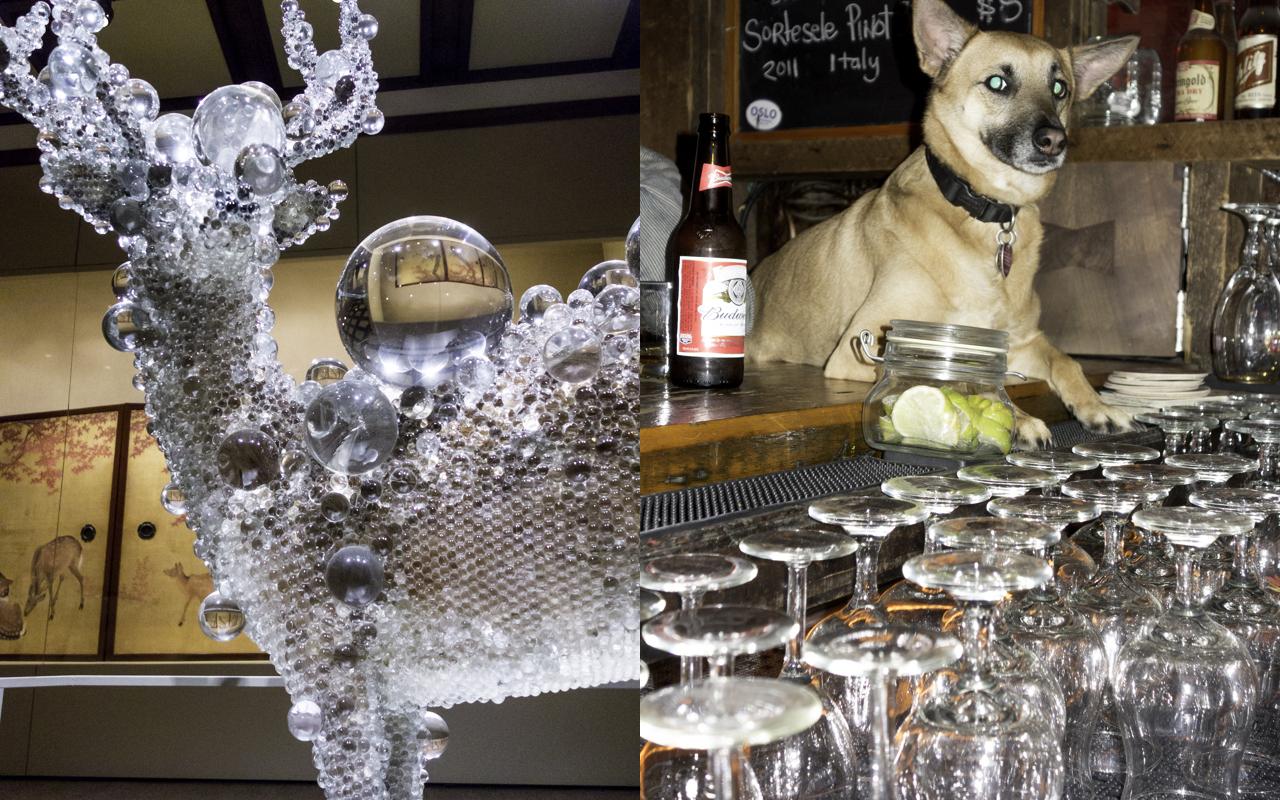 Glass animal, animal and glass