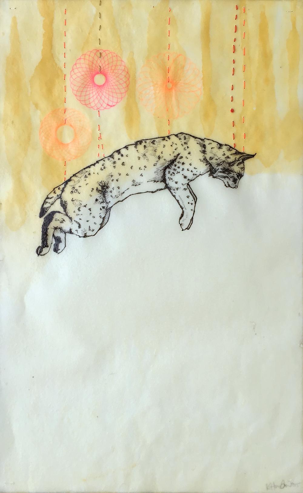 khunter-suspended-bobcat.jpg