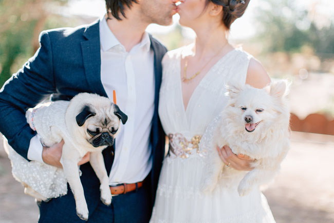 I adore this shot.  (And those are some tuckered-out pups!)  |  Photo by  Mike Cassimatis  via  Green Wedding Shoes