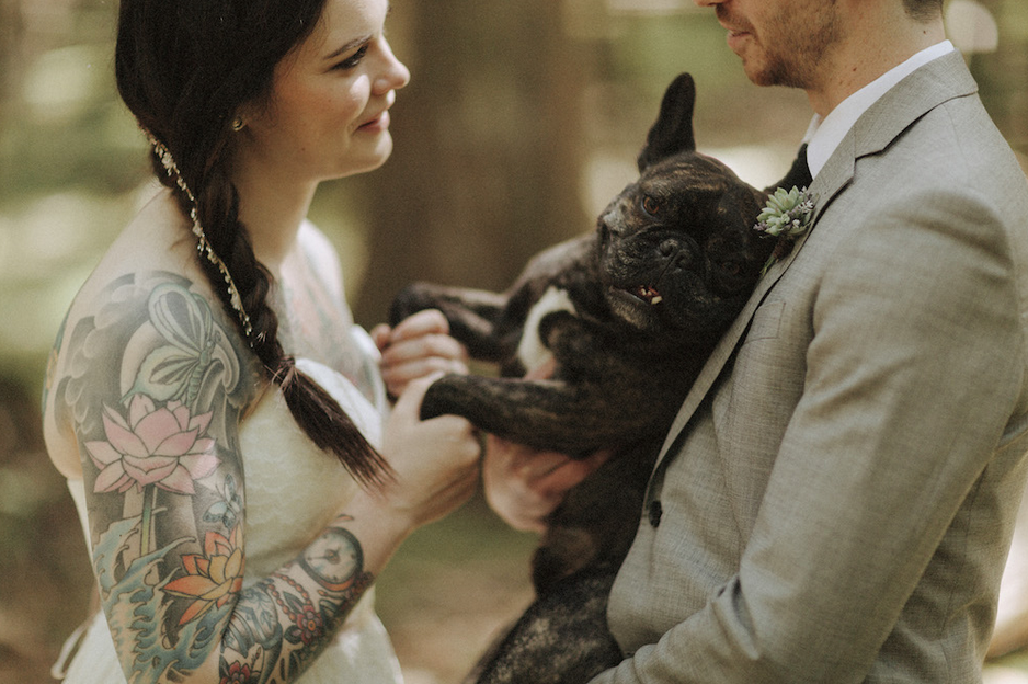 That's one comfortable pup. | Photo by Tomasz Wagner Photo + Films via Rock n' Roll Bride