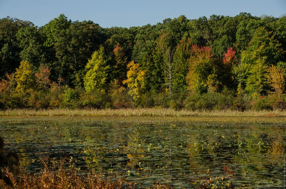 Fall Colors Begin at Haven Hill Lake 092714-5243 1024x768.jpg